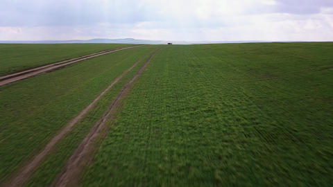 Aerial view of green fields and and a truck driving on a dirt road Live Action