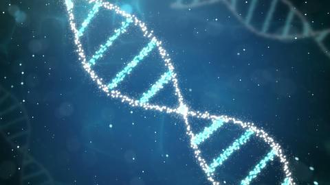 Molecular Human DNA Animation Animation