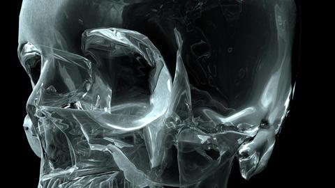 Skull 001: A crystal skull rotates and faces camera Animation