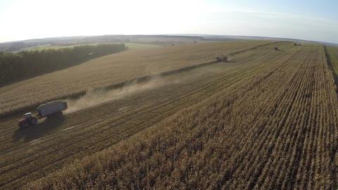Flying over machinery working in vast cornfields Footage
