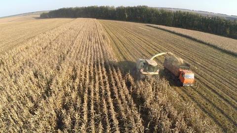 Aerial view of crop harvesting Footage