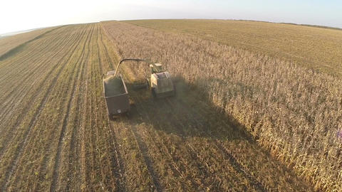 Harvesting crops on vast farmlands, aerial view Footage