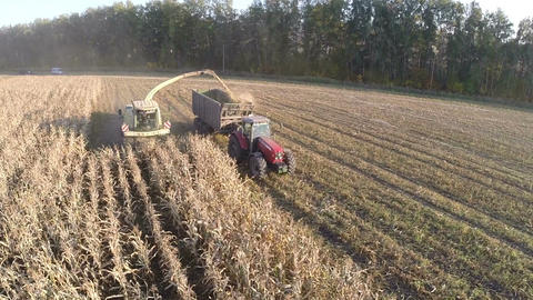 Aerial shot of farmwork on gathering crops Footage