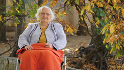Portrait of a happy old lady in a wheelchair. Autumn Footage