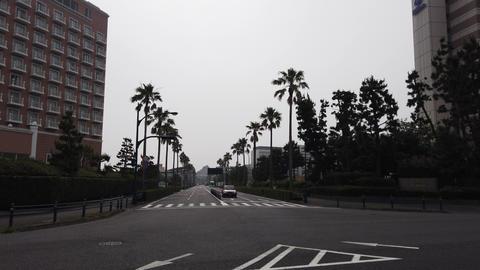 Maihama012 ライブ動画