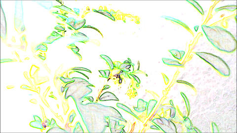 CREATIVE STYLE - Illustration & Video 1 2