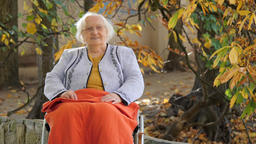 Portrait of a happy senior woman in a wheelchair in a city park at fall Footage