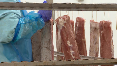 Worker hangs pieces of meat for Smoking Live Action