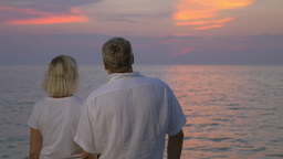 Couple Admiring Sunset over the Sea Footage