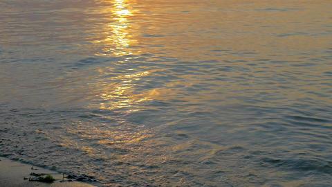 Arriving Sea Waves at Sunset Footage