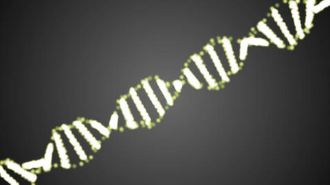 Animated DNA chain. Rotation DNA Animation