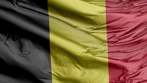 Belgium Flag Real Animation Loop Animation