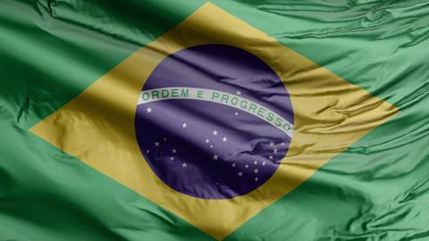 Brazil Flag Real Animation Loop Animation