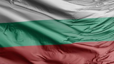 Bulgaria Flag Real Animation Loop Animation