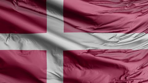 Denmark Flag Real Animation Loop Animation