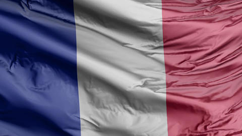 France Flag Real Animation Loop GIF