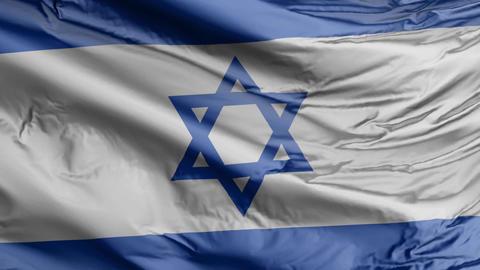 Israel Flag Real Animation Loop Animation