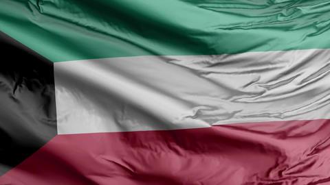 Kuwait Flag Real Animation Loop Animation