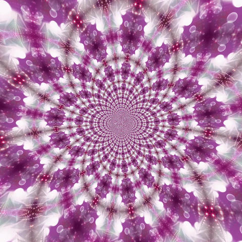 Pink Fractal Art Animation