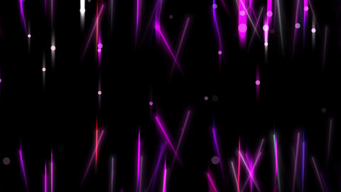 Purple Collection 0