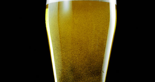 Glass of beer against black background 4k Live Action
