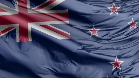 New Zealand Flag Real Animation Loop Animation