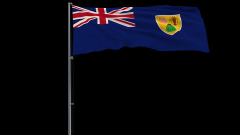 Flag Turks and Caicos on transparent background, 4k prores 4444 footage with alpha Animation