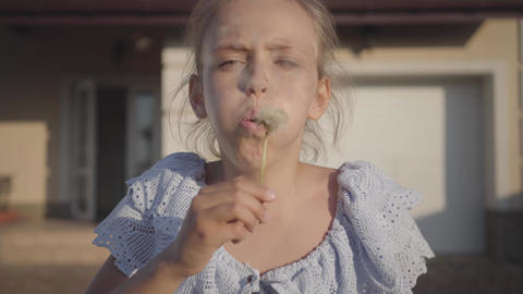 Portrait of a pretty cute little girl blowing a dandelion and looking at the Footage
