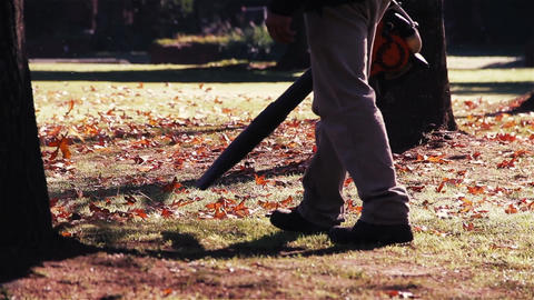 Gardener Clearing up the Leaves using a Leaf Blower Footage