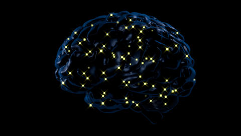 Brain activity Animation