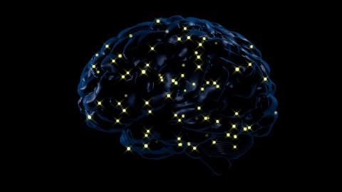 Brain activity Animation