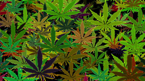 Marijuana Green Random Infinity Loop Background CG動画素材