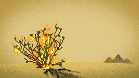 The Biblical Burning Bush and Pyramids in the desert Footage