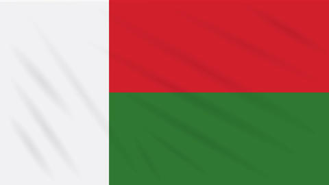 Madagascar flag waving cloth, background loop Animation