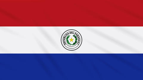 Paraguay flag waving cloth, background loop Animation