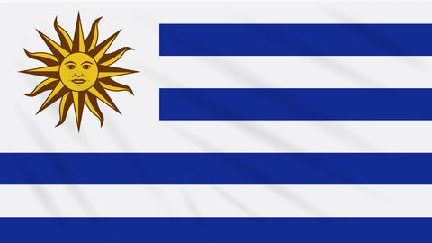 Uruguay flag waving cloth, background loop Animation