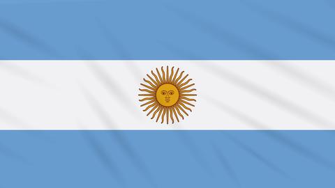 Argentina flag waving cloth, background loop Animation