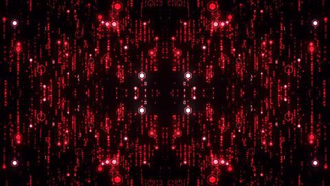 R Red Digital Background 실사 촬영