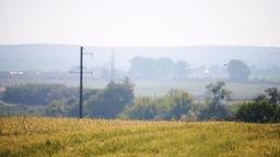 Focus rack of dacha farm wheat field at sunrise in Ukraine or Russia Footage