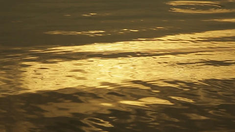 Golden Water Light. (60 Fps) 1