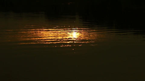 Golden Water Light. (60 Fps) 2