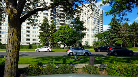 Side View of City Stop and Go Traffic Driving By Lush Green Trees. Urban Landscape With Car Vehicle Footage