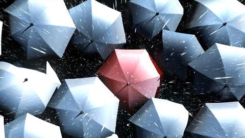 Red Umbrella Wades Through a Flow of Black Umbrellas Animation