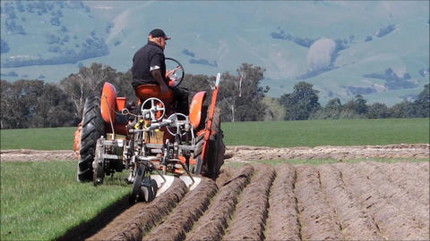 Ploughing with vintage machinery 2 Footage