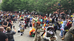 Furries at the 2016 Anthrocon Convention Parade in Pittsburgh Footage