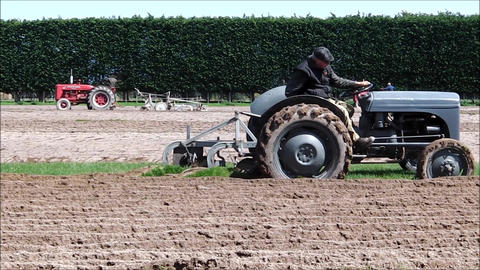 Classic grey Ferguson tractor Footage