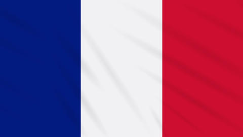France flag waving cloth background, loop Animation
