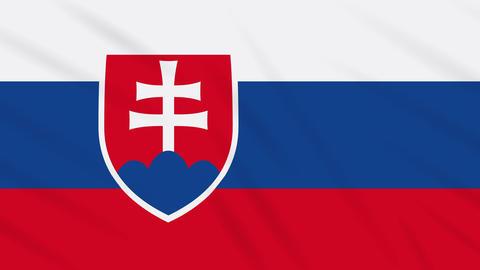 Slovakia flag waving cloth background, loop Animation