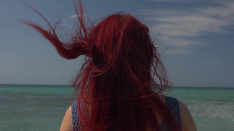 view of the back of a woman with red hair flying in the wind against the Footage