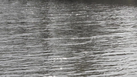 The water surface of the calm river glitters in the sun Footage